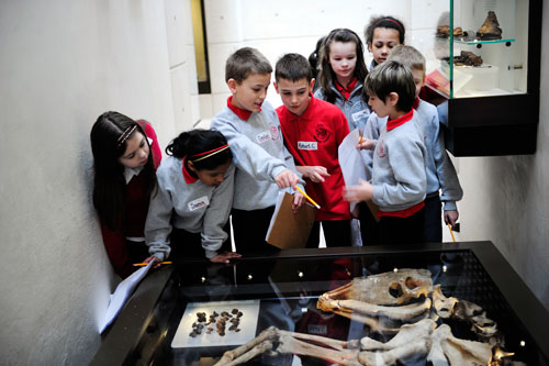 Examining objects in the National Museum of Scotland