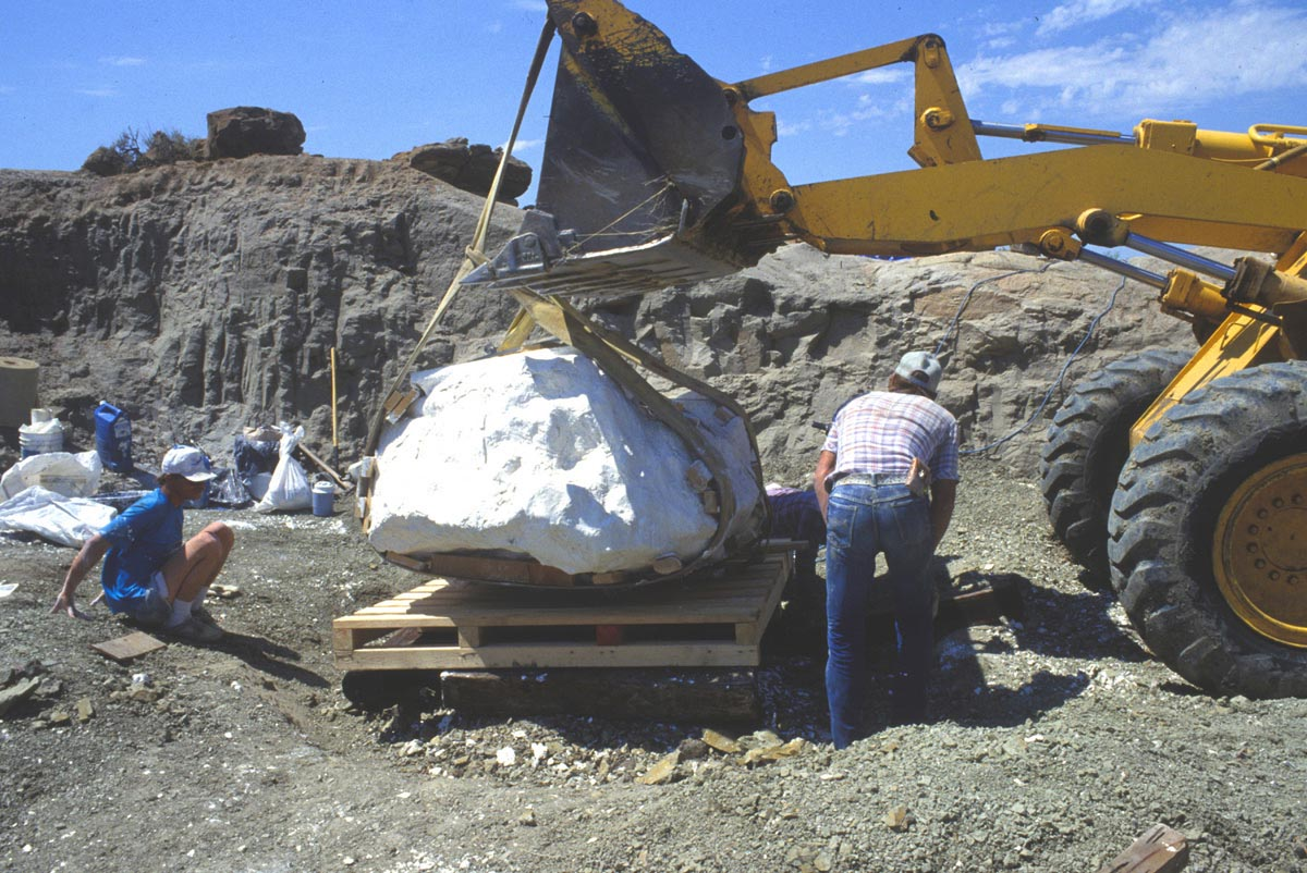 Loading a 9,000 lb Wankel jacket onto a pallet in 1990 © Museum of the Rockies