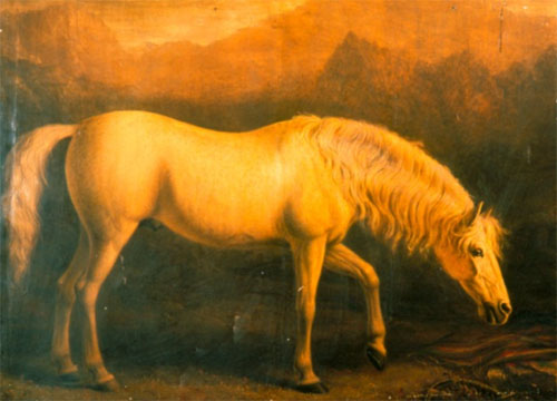 William Shiels, The Arabian Stallion, 1839-41. Photographed by FVS Murrell.  This horse was taken in a skirmish with an Arab tribe and imported into Britain by Sir John McNeill, G.C.B., British Minister at the Court of Persia. This is one of the pictures remaining on its stretcher.