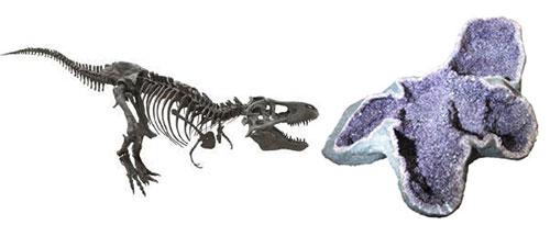 Tyrannosaurus rex cast and amethyst geode