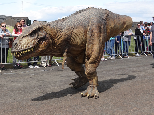 Tyrone the animatronic T.rex performing at Robots Live, National Museum of Flight, East Fortune