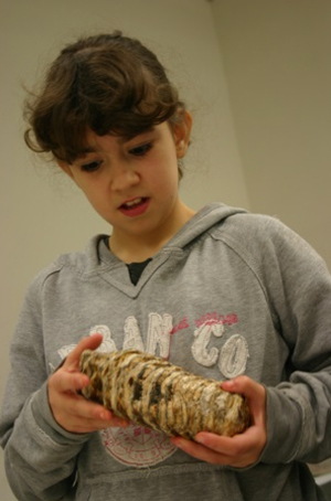 Everyone was amazed at the size of the mammoth tooth