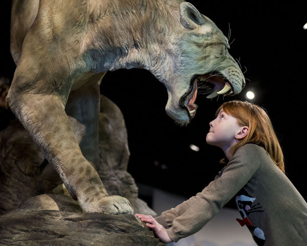 Morag having a staring competition with a Sabre tooth cat. © Ian Jacobs