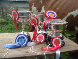 National Museum of Rural Life's Ayshire herd trophies