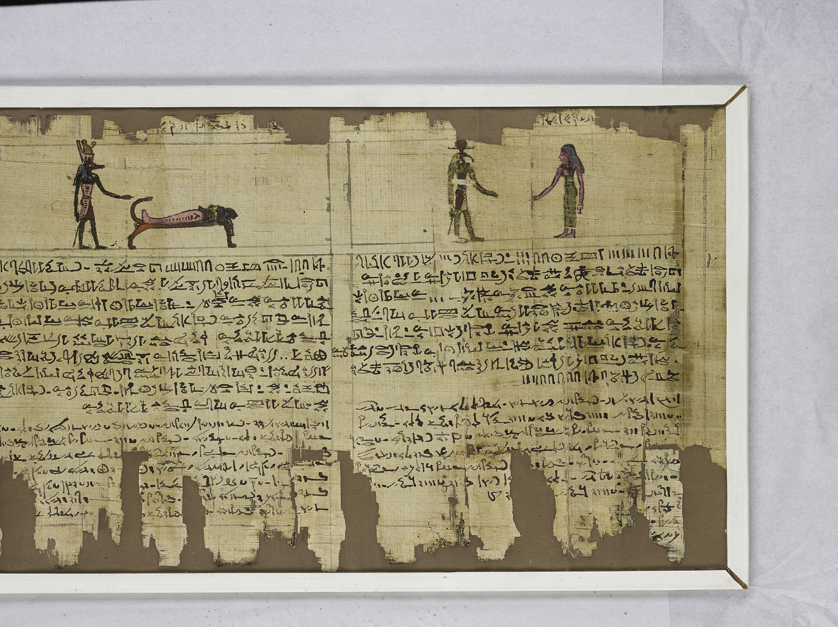 Egyptian papyrus scroll