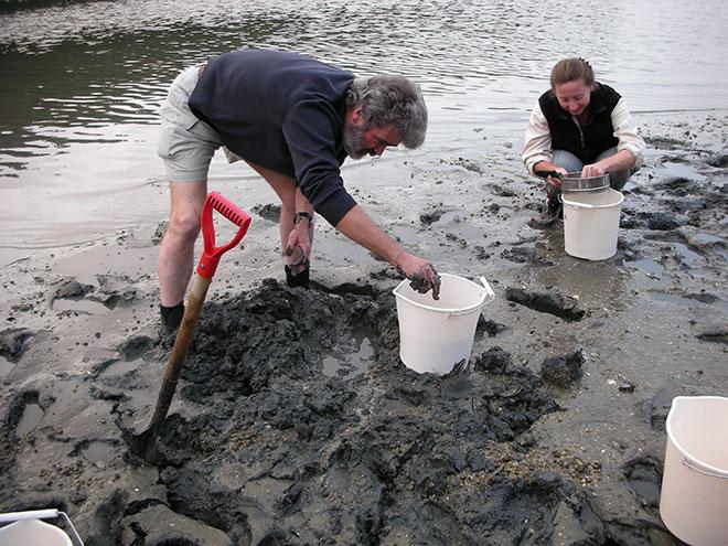 Collecting specimens in the Damariscotta river in Maine