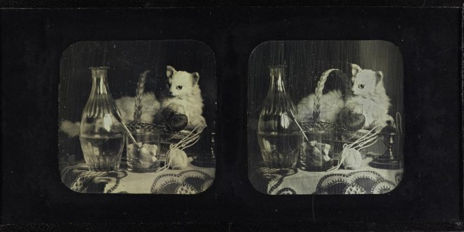 Still-life stereo-daguerreotype by Jules Duboscq, 1850s