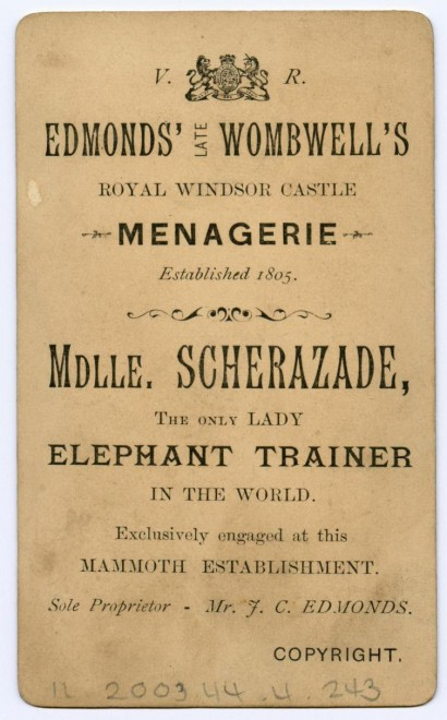 Reverse of Mlle Scherazade's carte-de-visite. From the Howarth-Loomes collection at National Museums Scotland.