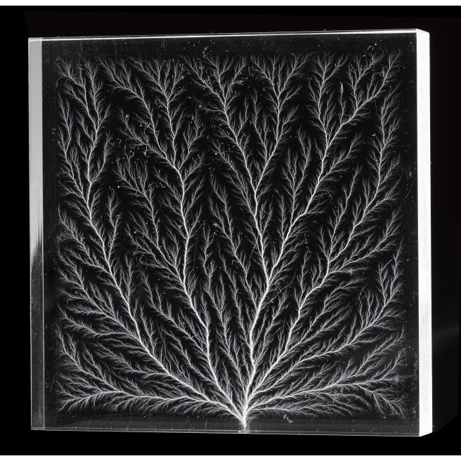 Perspex block showing fern-like pattern of ionised paths through the material produced by corona discharge from a 2 million volt Van de Graaf electric generator. 1956