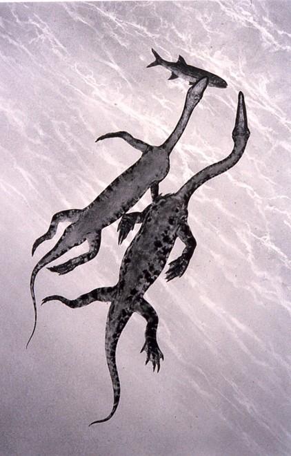 Restoration of swimming nothosaurs