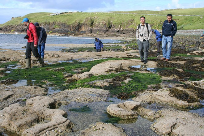 Fossil hunting on the Isle of Skye