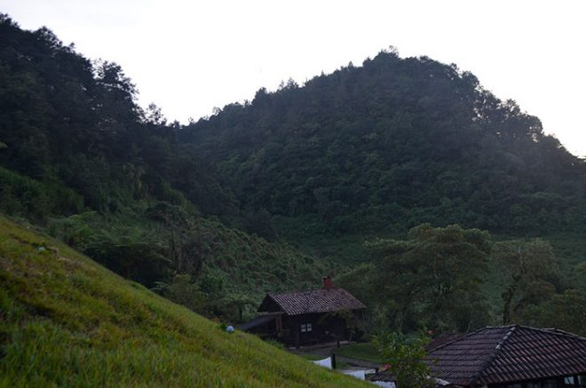 A beautiful view from our hut in the forest