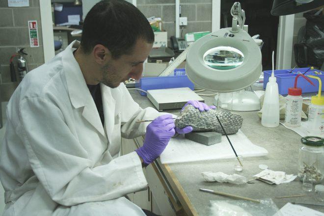 Preparing specimens in the lab