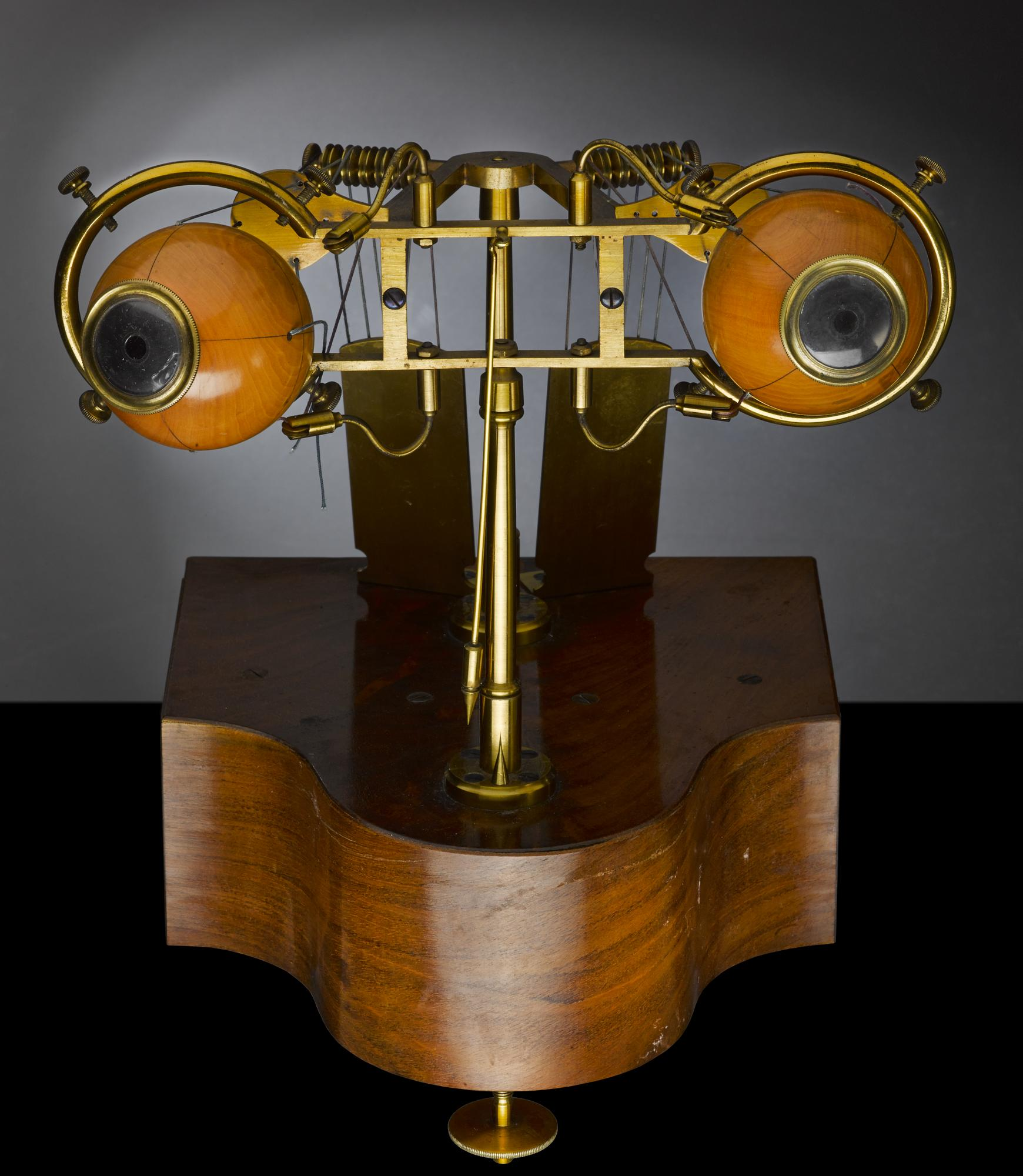 Reute ophthalmotrope model, used at the Royal (Dick) School of Veterinary Studies, University of Edinburgh, maker unknown, late 19th century