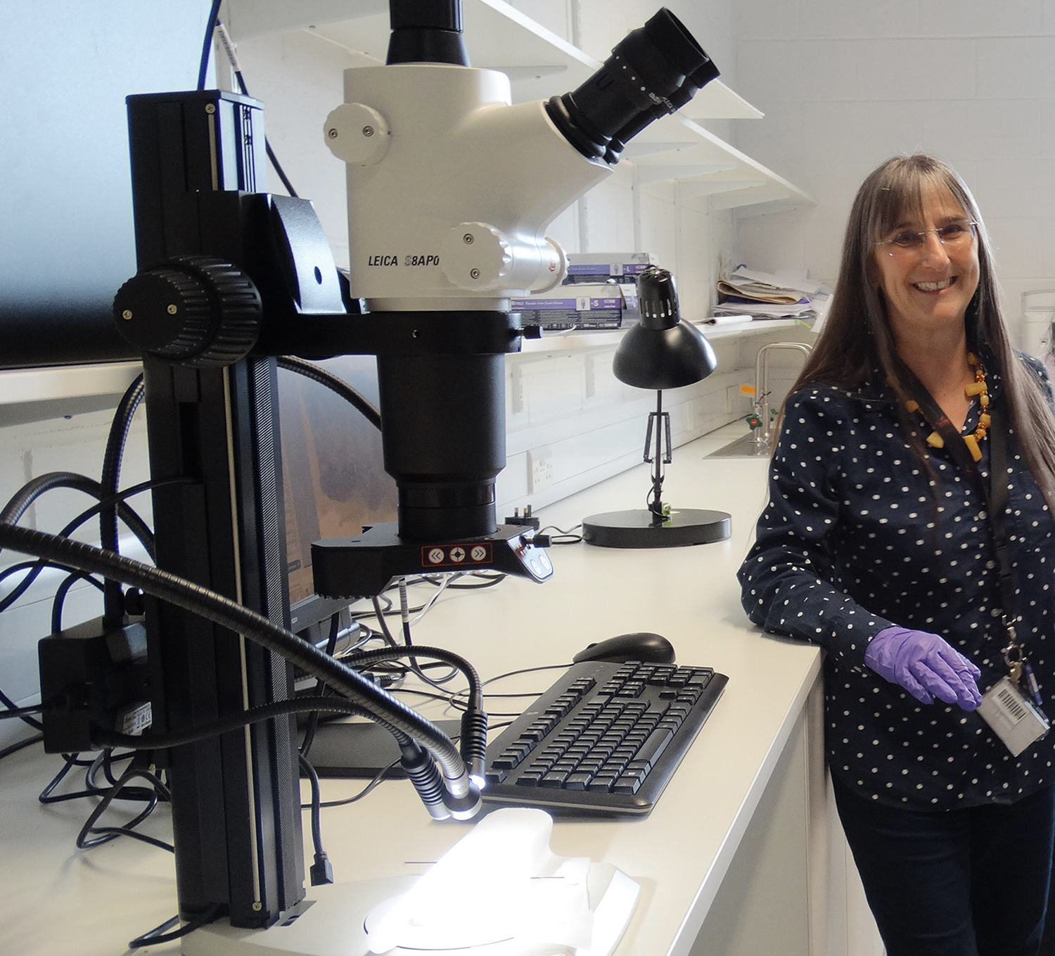 Dr Alison Sheridan in lab at the Collections Centre.