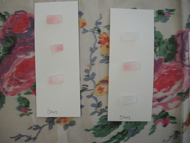 Cut gel blocks after testing showing signs of dye uptake.
