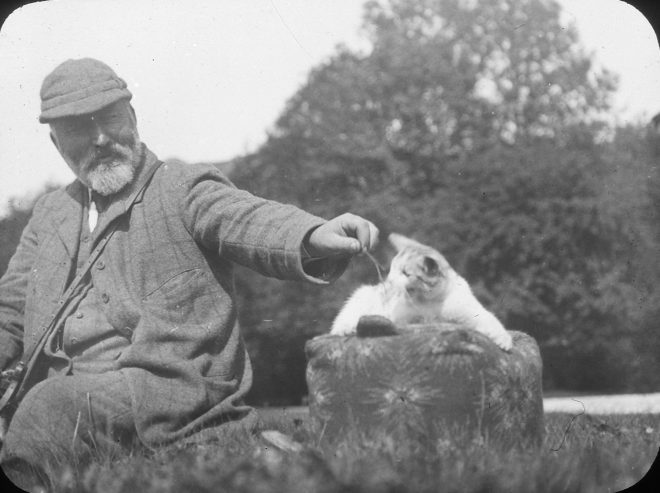 Photograph of man and cat, 1880-1920