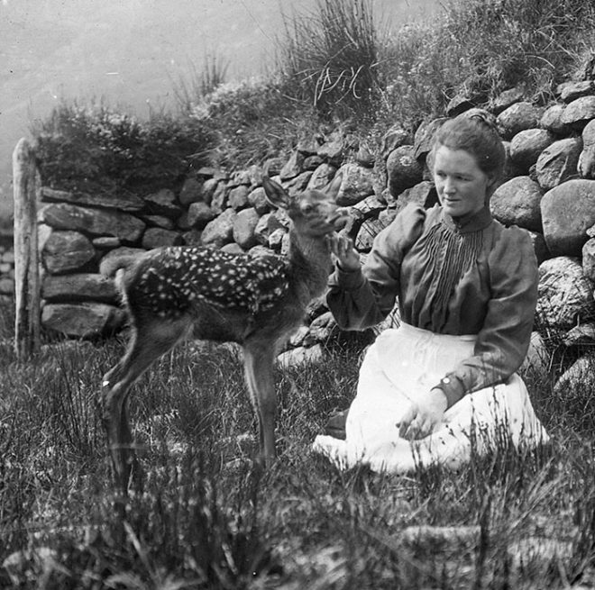 Woman with deer, 1880-1920