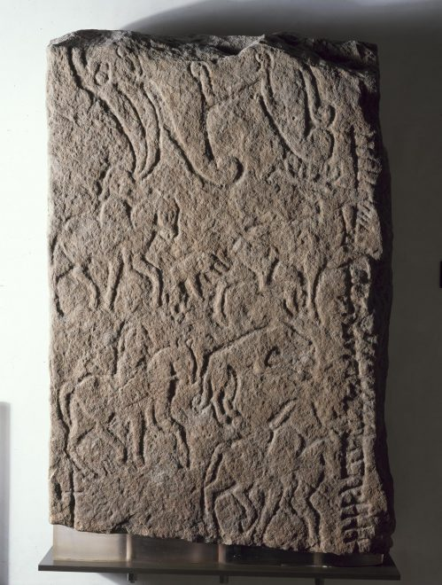 Pictish beast on the back of a cross-slab from Scoonie, Fife