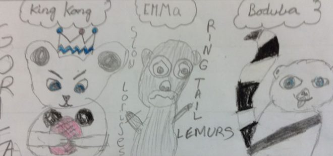 We thought Boduba was a great name for a lemur, in this entry from P5W Trinity Primary School.
