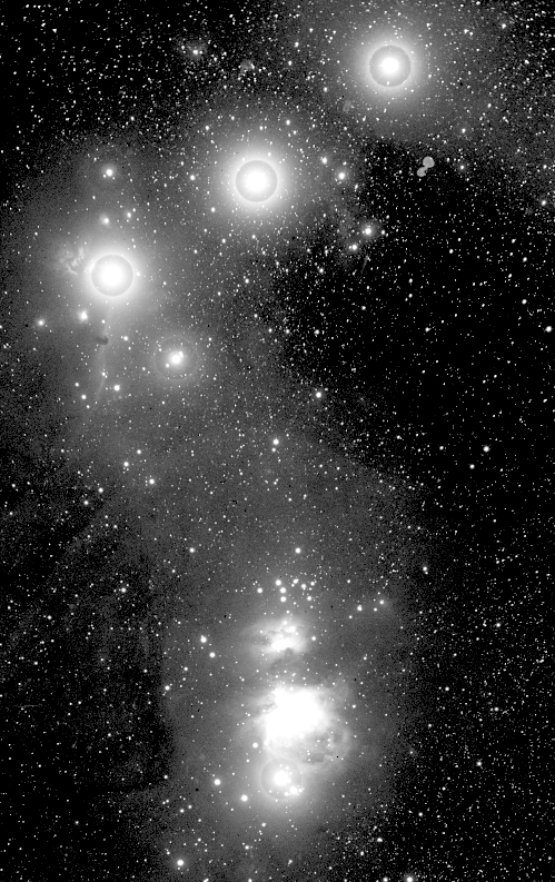 The photograph where the Horsehead Nebula was first recorded, Harvard College Observatory. This image was taken with an exposure of 90 minutes in 1888, but not examined until 1889. Image: Harvard College Observatory.