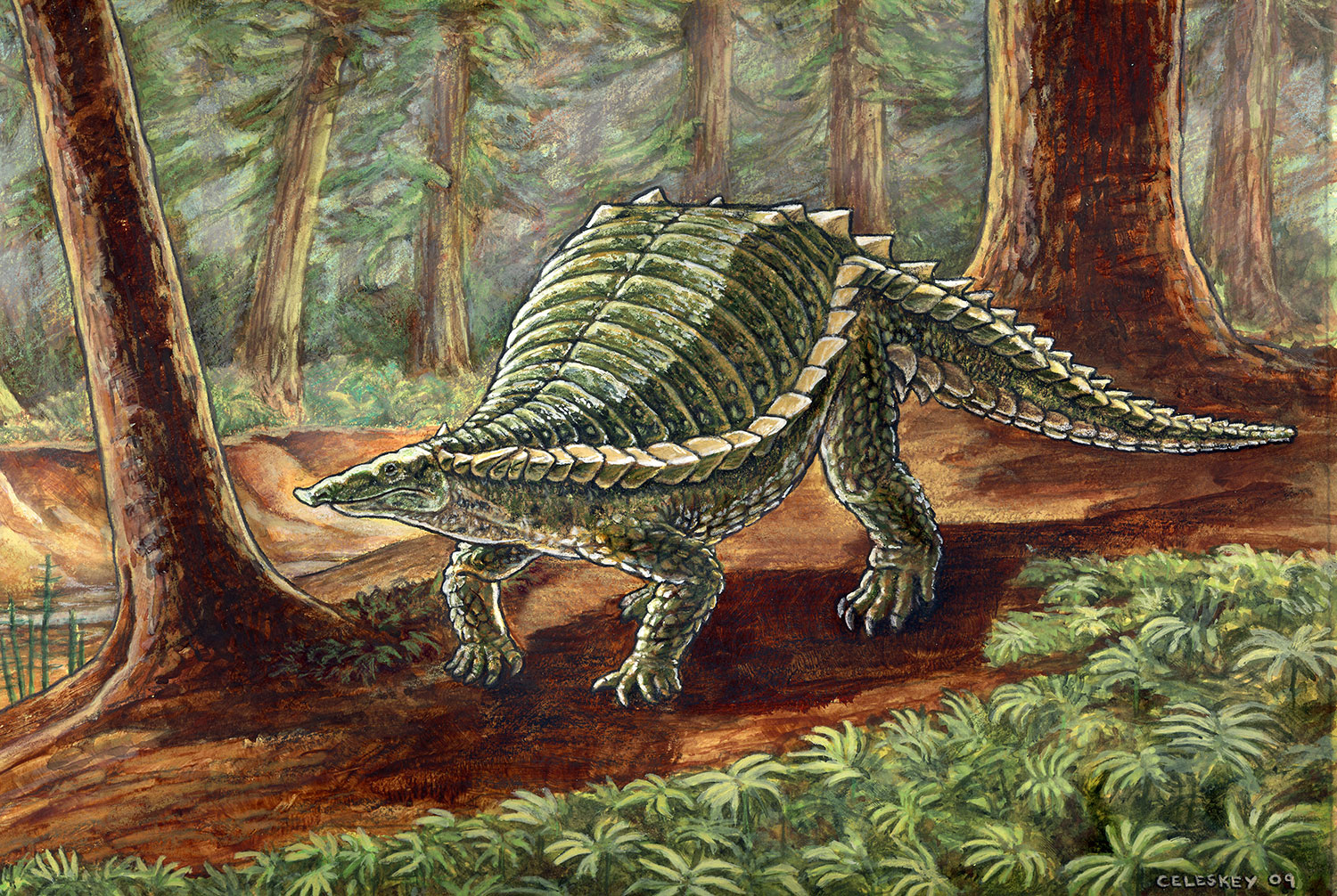 Restoration of Typothorax an example of the Triassic armoured reptile group known as aetosaurs. Illustration © Matt Celeskey.
