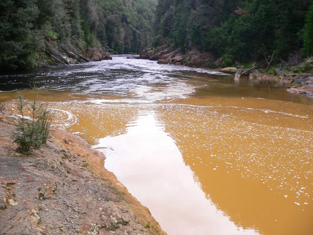 Queen River meets King River, 2008, Western Tasmania, Australia