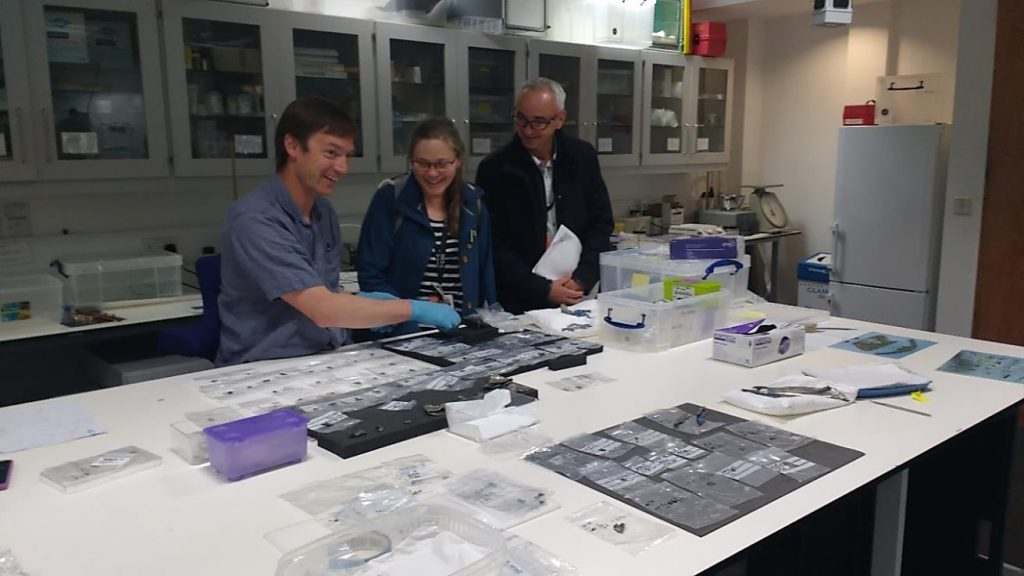 Curators Alice Blackwell and Fraser Hunter starting to sort the 400 finds.