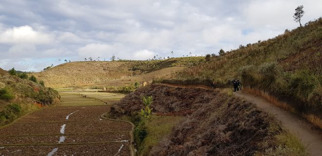 Facing west, showing deforested land