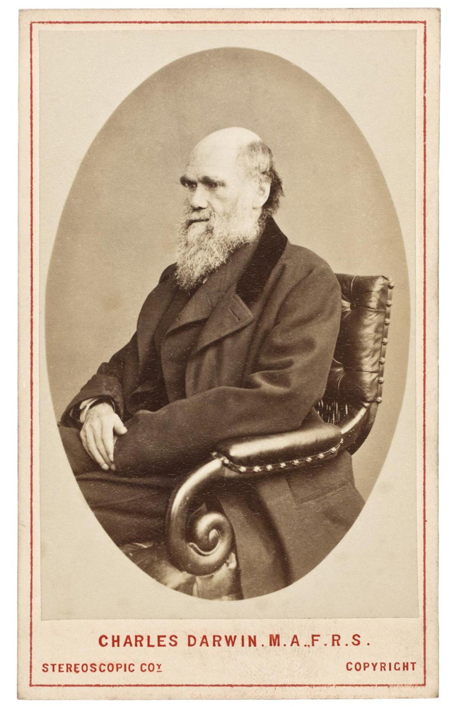 Carte-de-visite depicting Charles Darwin, by the London Stereoscopic & Photographic Co. Ltd, London. IL.2003.44.4.36