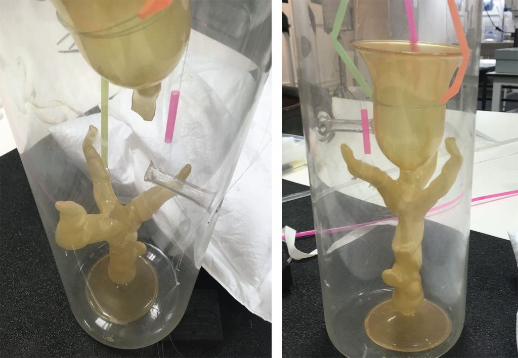 Attaching the second branch and the cup