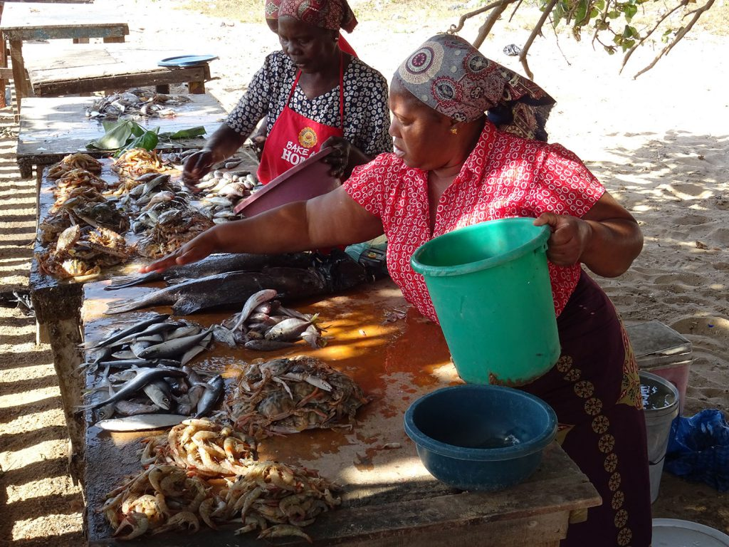 At the fish and seafood stall near the Maputo-Katembe ferry quayside July 2019.