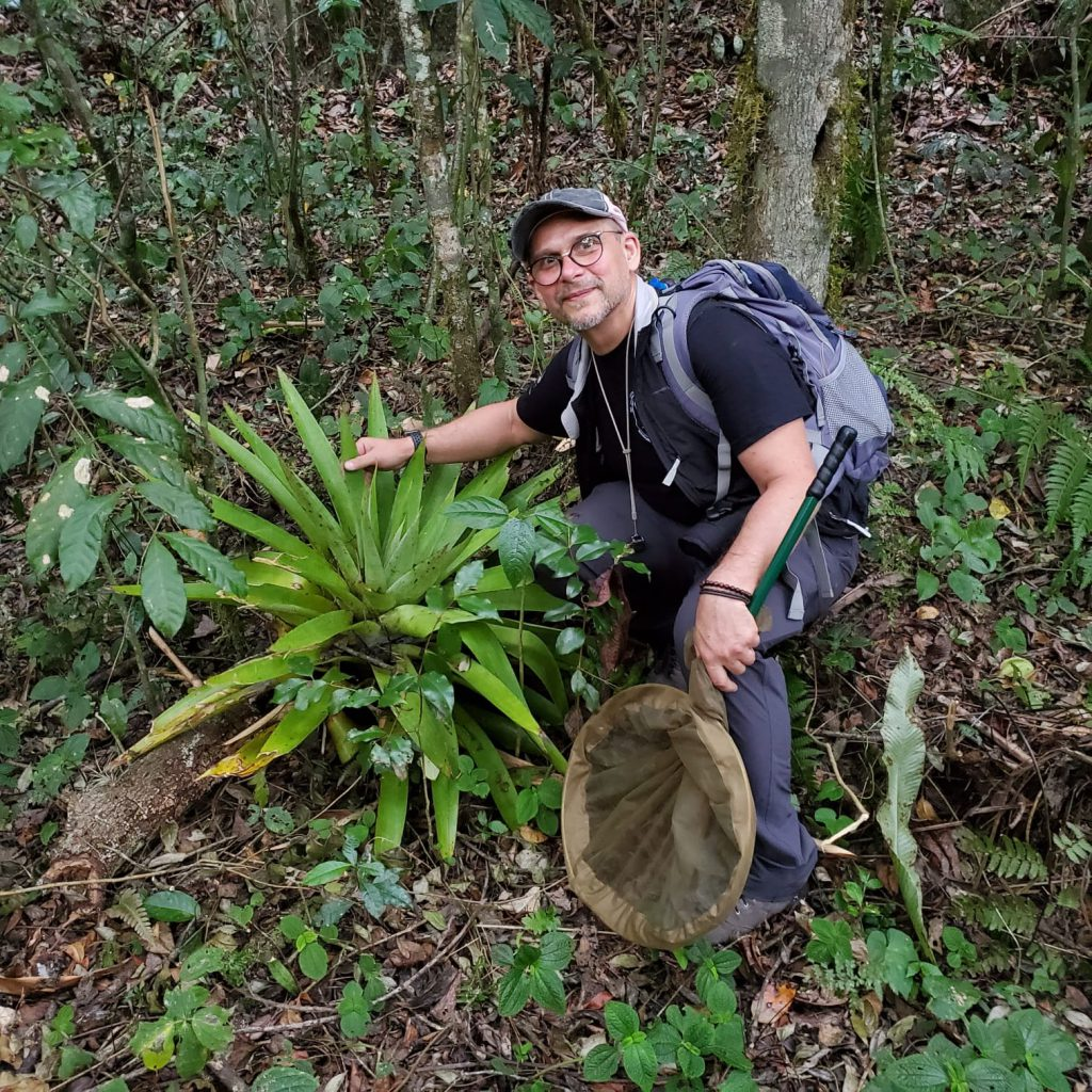 Vlad with a large terrestrial bromeliad plant in Armando Bermudez National Park