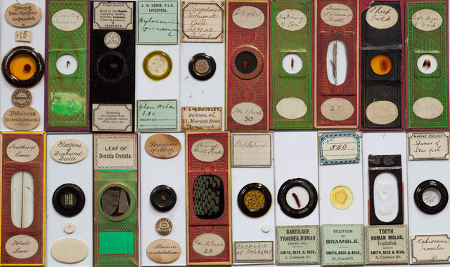 Close-up of more slides. Note that some are paper covered, others have protective 'ringing', with some quite ornate. Labelling can be quite descriptive and is often in copper-plate script.