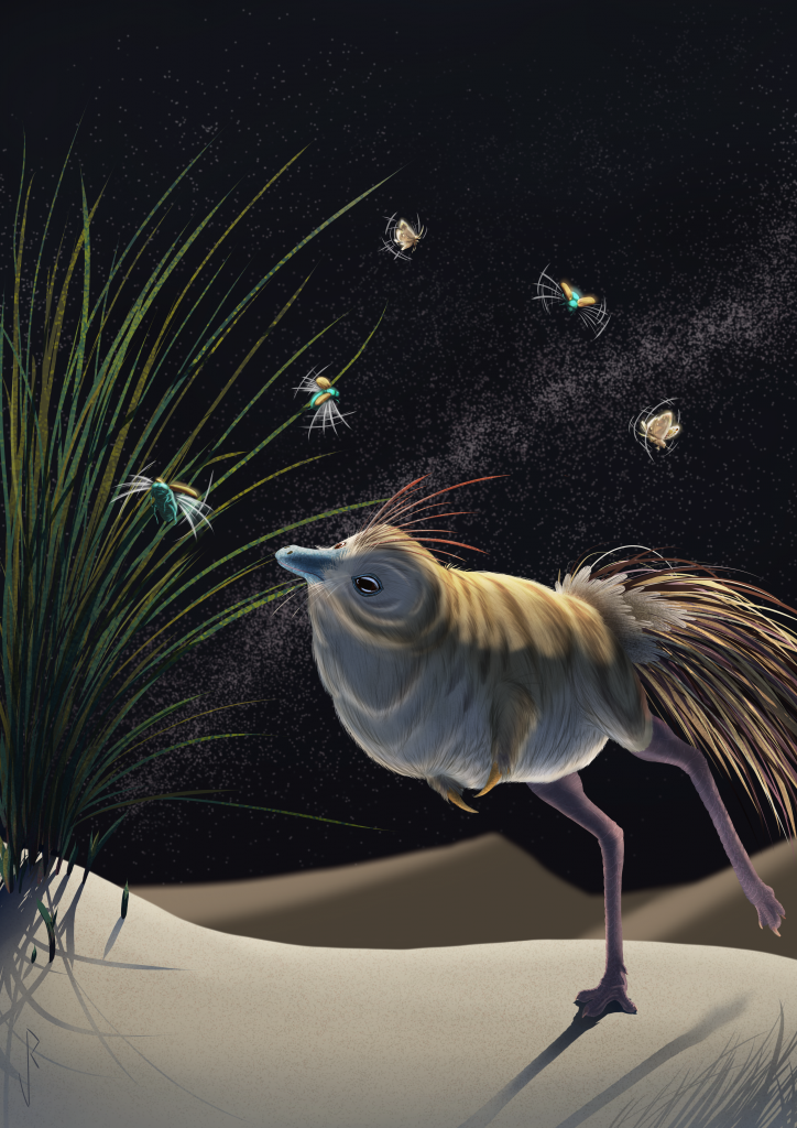 Illustration of a small dinosaur with reduced forelimbs, feathers and large eyes exploring in the dark.