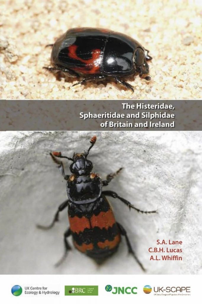 Book cover of the The Histeridae, Sphaeritidae and Silphidae of Britain and Ireland.