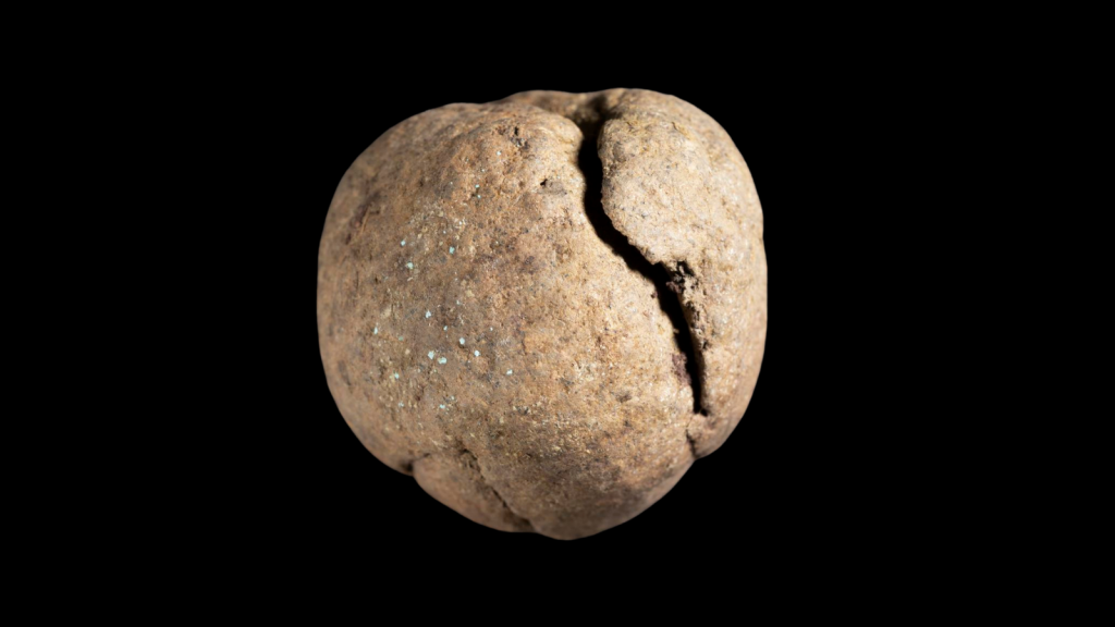 Close-up of a light brown dirt-ball with a large, vertical crack on its right side. Tiny shimmering flecks dot its surface.