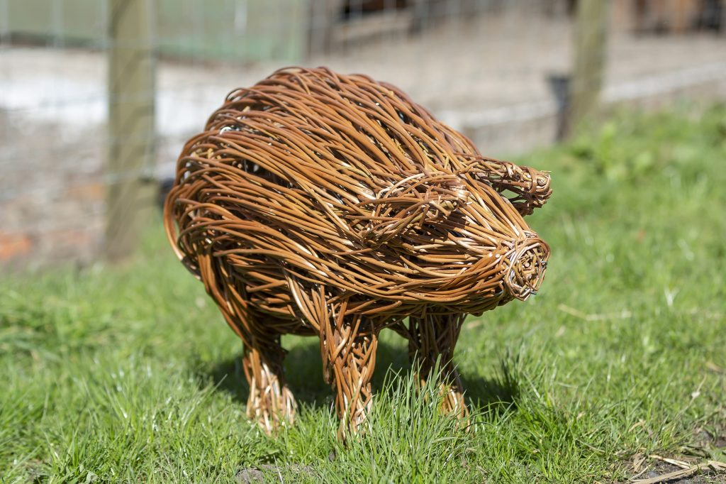 Colour photo of a willow sculpture of a piglet.