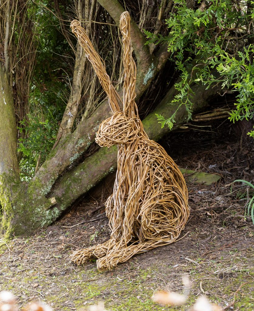Colour photo of a hare willow sculpture sitting in front of a bush.